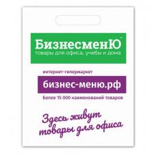 Пакет презентационно-упаковочный БИЗНЕСМЕНЮ, 40х50 см, усиленная ручка, 503226